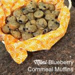 Mini Blueberry Cornmeal Muffins + CNN AccentHealth