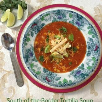 South-of-the-Border Tortilla Soup