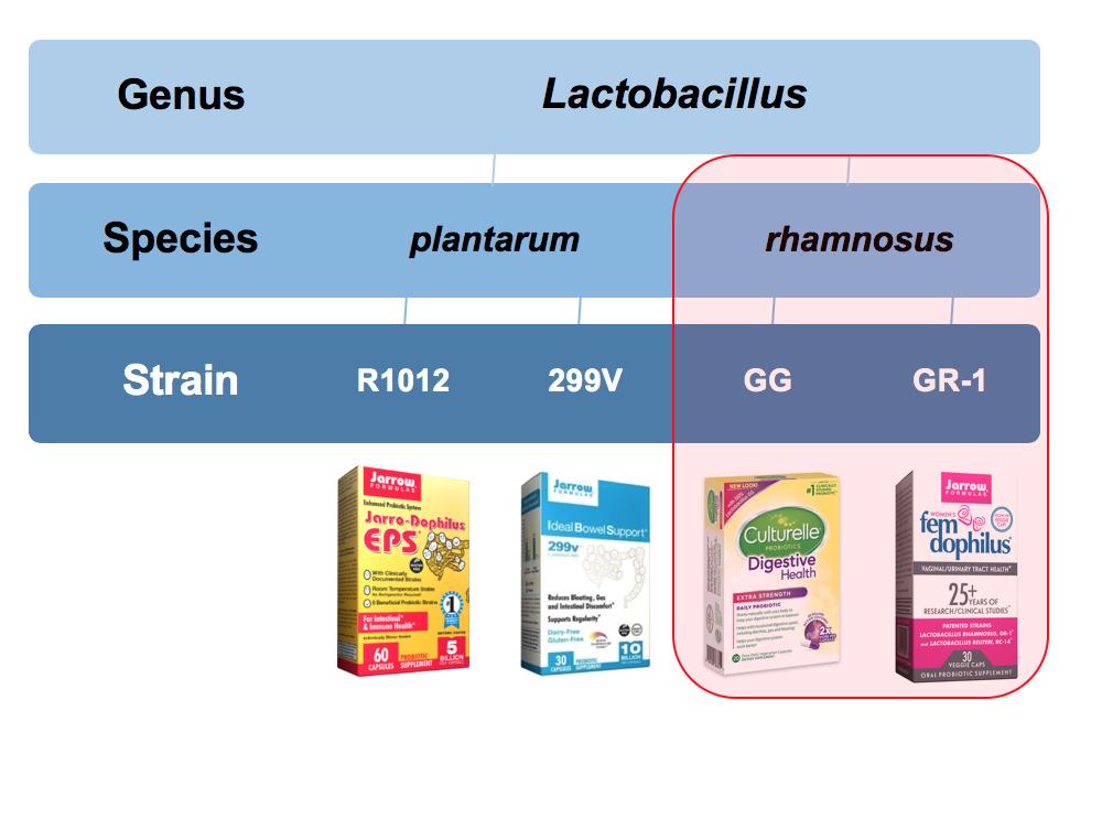 Probiotic Supplements with Jarrow Formulas via LizsHealthyTable.com #podcast